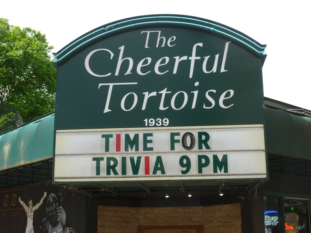 The Cheeful Tortoise - Slow and Steady Wins the Race (5/6)