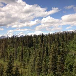 Mt. McKinley - the tallest peak in North America