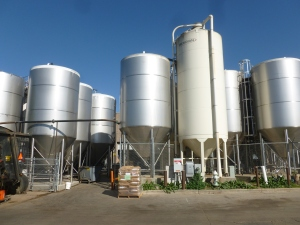 50,000 barrel capacity will double with the new brewery