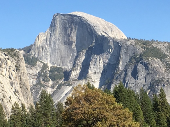 The awesome Half Dome in Yosemite National Park