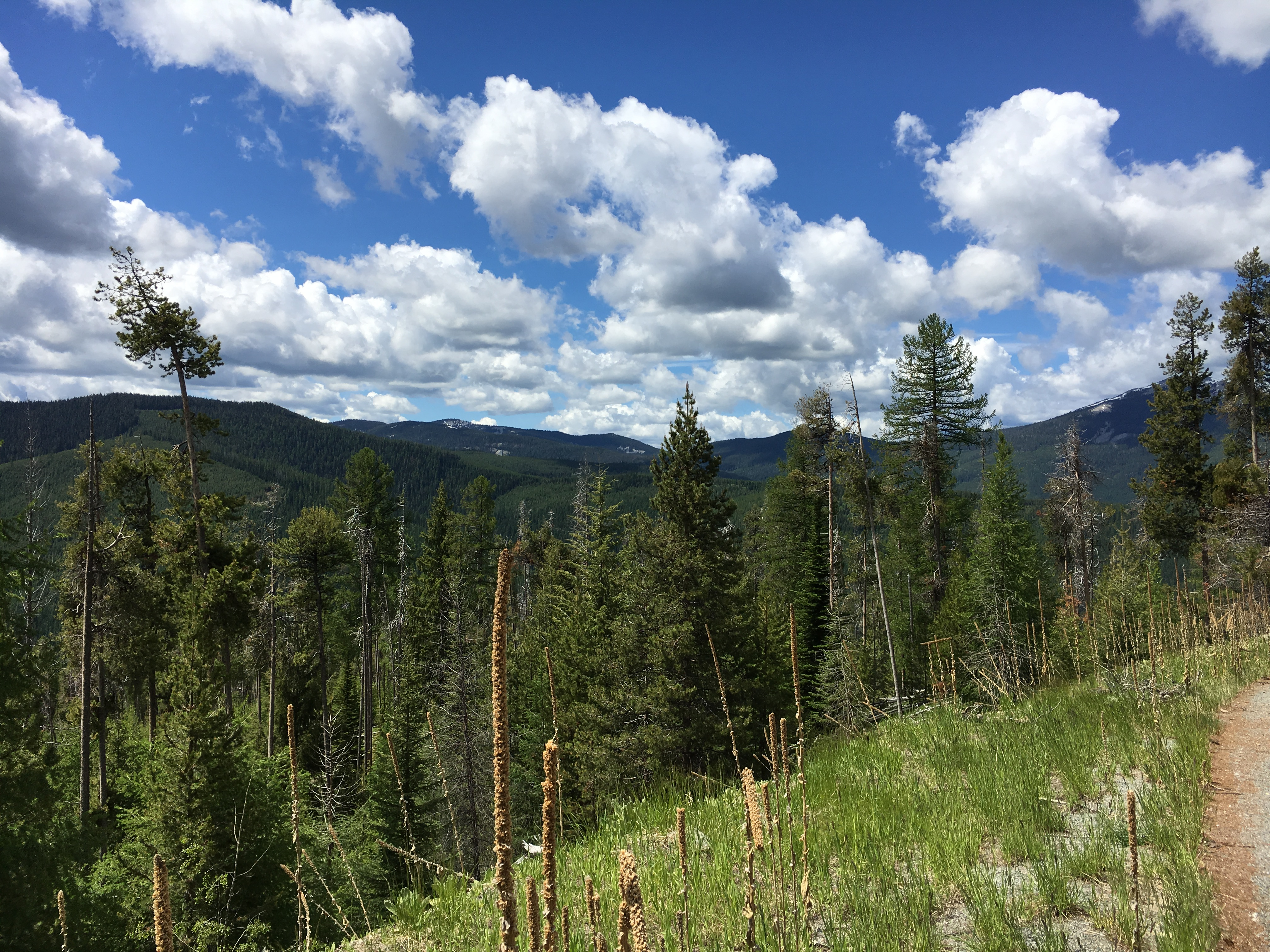 Big Sky Beerchasing – The Preface | thebeerchaser